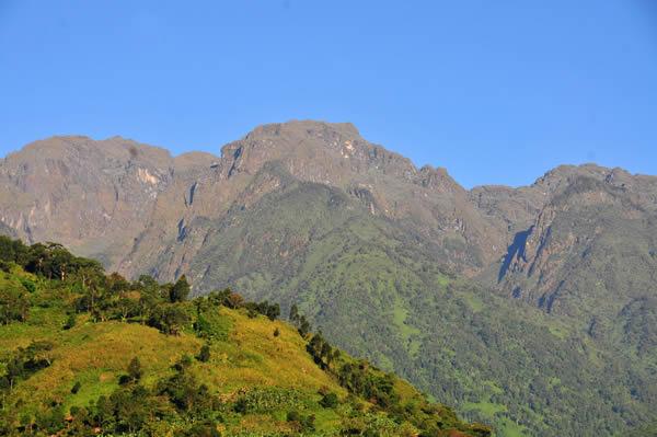 Rwenzori National Park