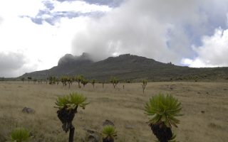 Mount Elgon