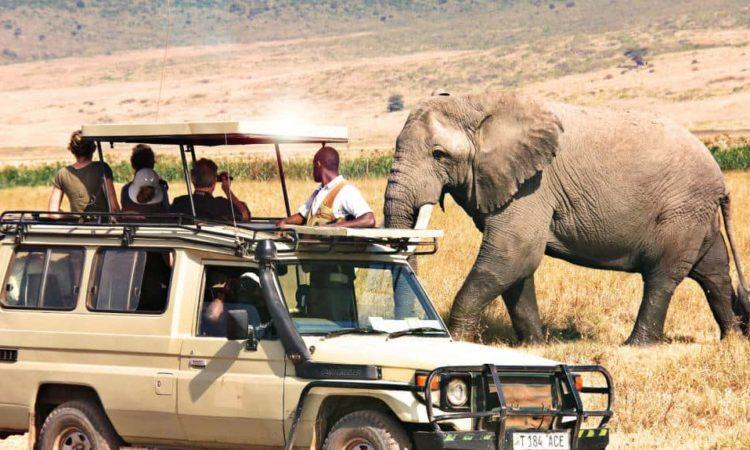 13 Days Tanzania wildlife safari and Cultural tour