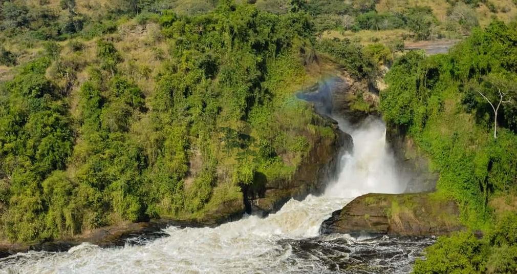5 Days Murchison Falls and Semliki wildlife safari