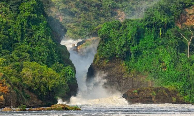 8 Days Best of Uganda Safari
