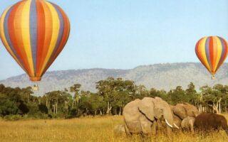 Hot Air Balloon Safari in Queen Elizabeth National Park